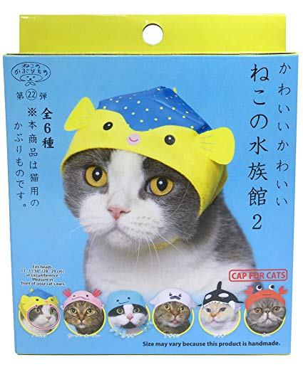 KITAN CLUB | Japanese Hat for Cats in Aquarium