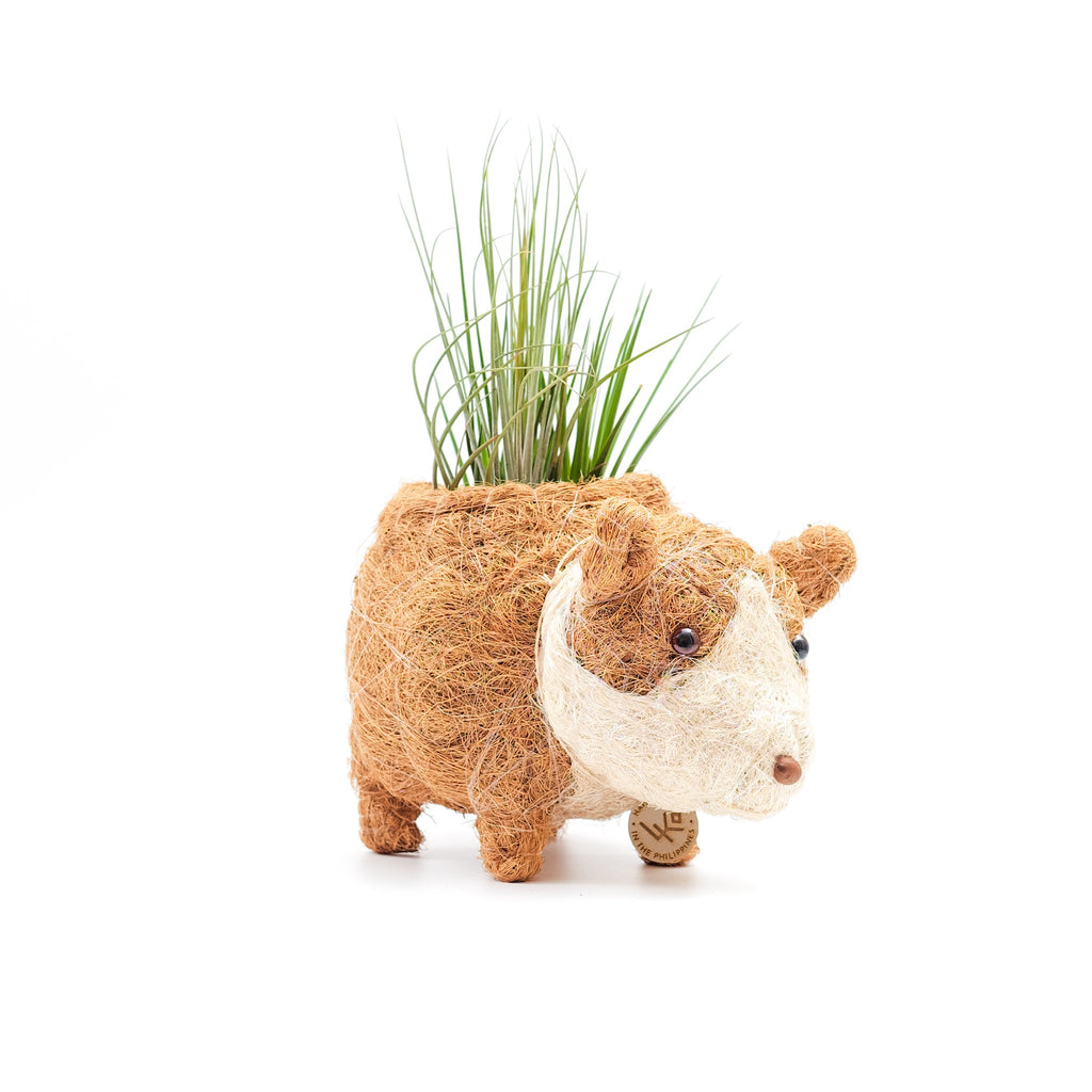LIKHA | Carlito the Corgi Planter