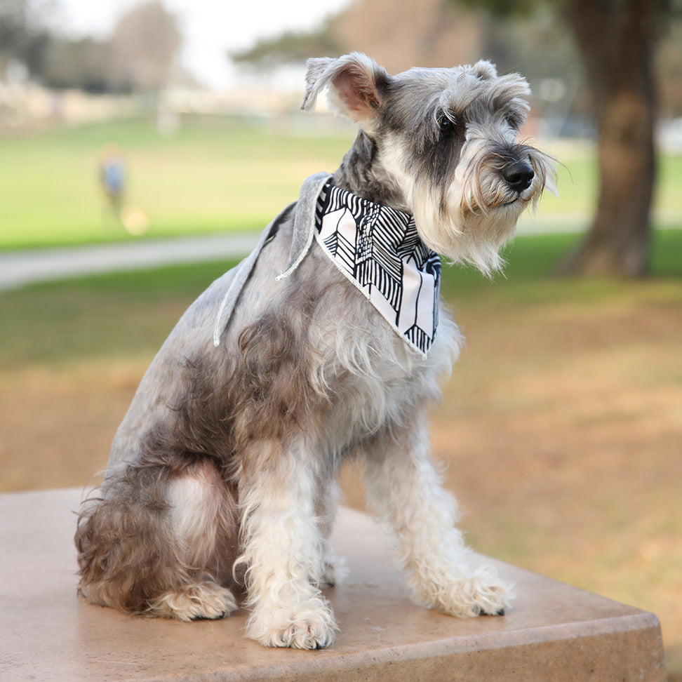LONG DOG CLOTHING | The Fletcher Bandana