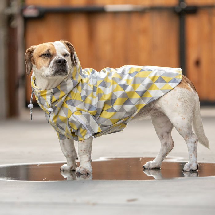 LONG DOG CLOTHING | The Metric Raincoat