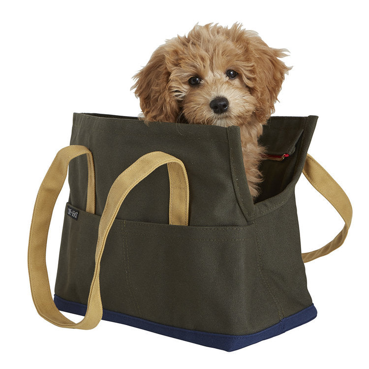 Canvas Pet Tote in Olive & Navy