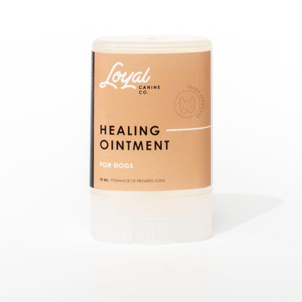 LOYAL CANINE | First Aid Healing Ointment