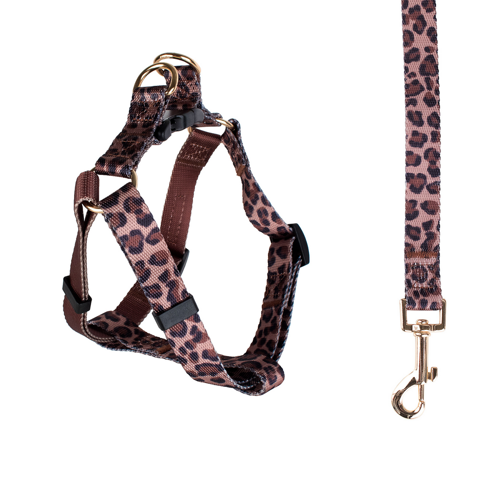 Leopard Harness & Leash Set (Drop-Ship)