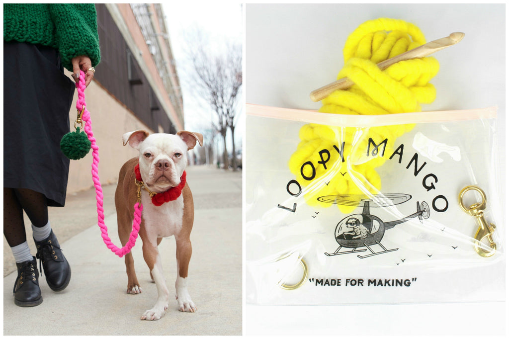 LOOPY MANGO | DIY Dog Leash Kit in Emerald