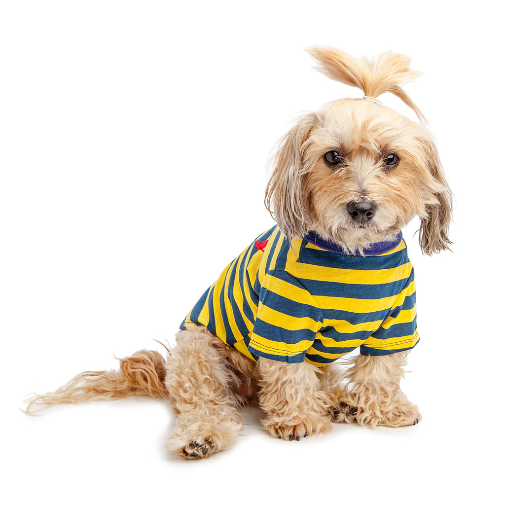 BEST FURRY FRIENDS | Striped Polo in Yellow and Blue