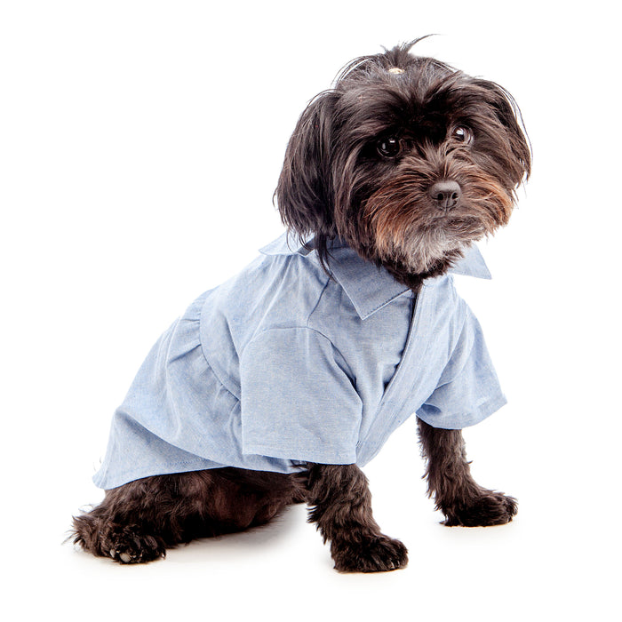 THE WORTHY DOG | Chambray Dress