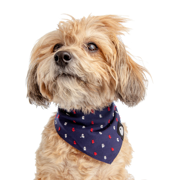 DOG & CO. | Cotton Fleck Bandana in Navy + Red