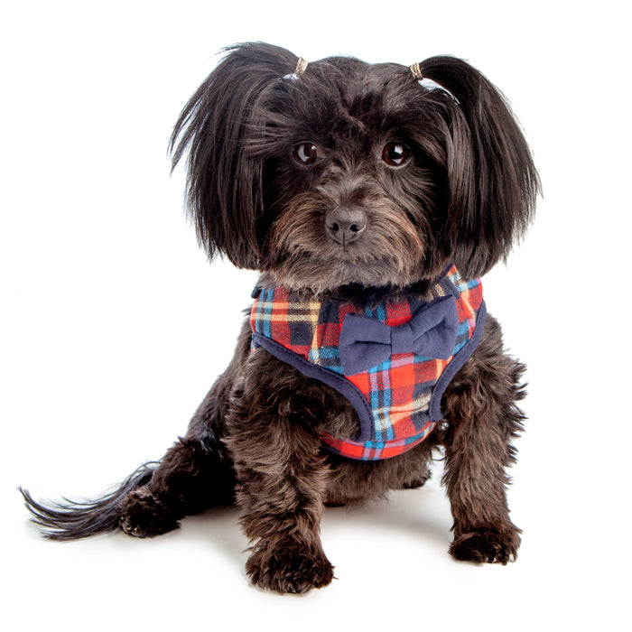 CROCI | British Plaid Harness