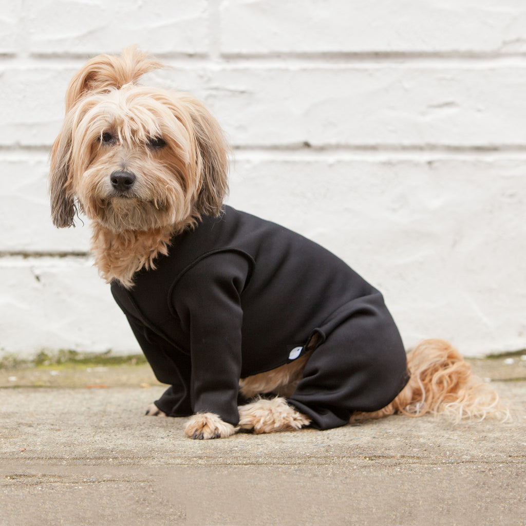 Stretch Onesie in Water Resistant Black (DOG & CO. Exclusive!)