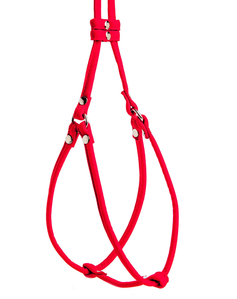 Nylon Step-In Adjustable Dog Harness in Red