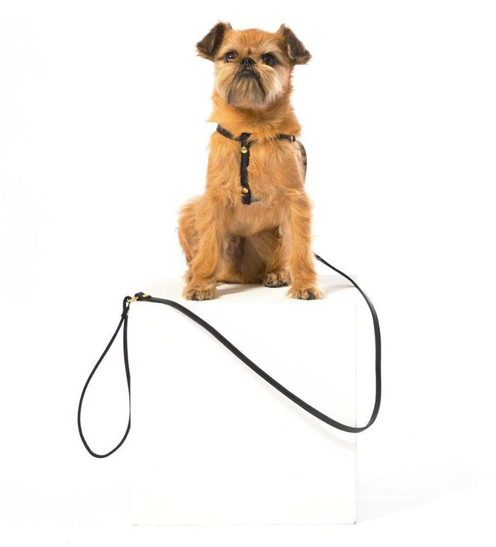 MR. DOG | Black Leather Step-In Harness & Leash