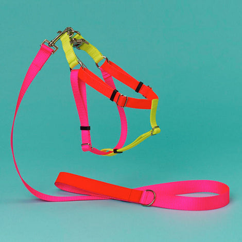 WARE of the DOG | Colorblock Harness in Pink