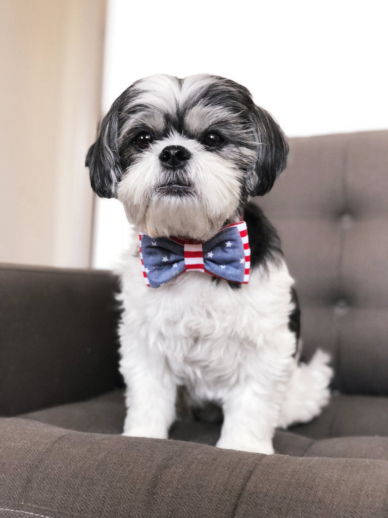 OH HONEY BEAR | Stars & Stripes Bow Tie
