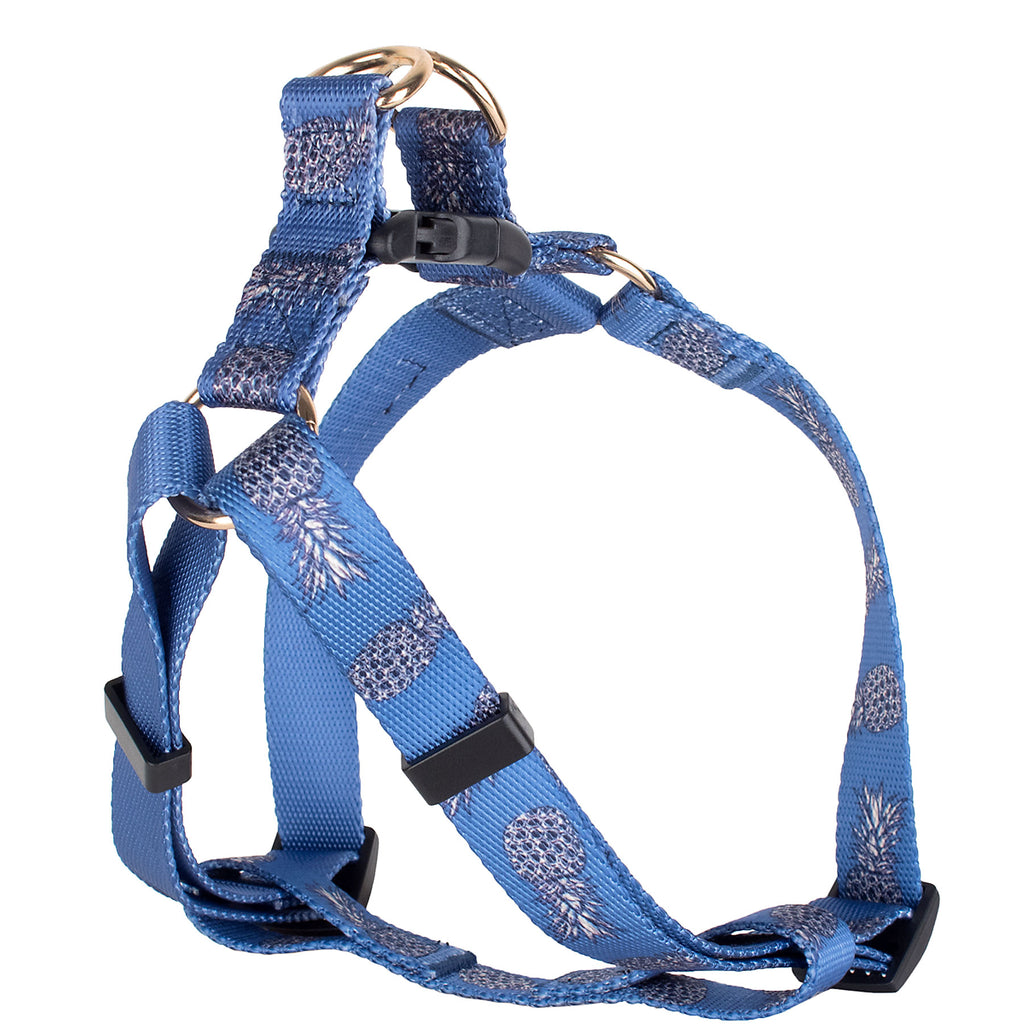 Pineapple Harness & Leash Set