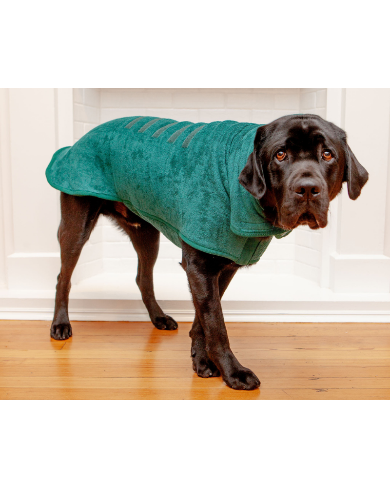 Dog Drying Coat in Bottle Green