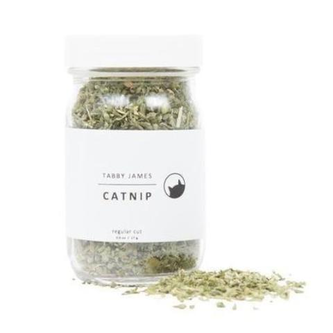 TABBY JAMES | Catnip Regular Cut