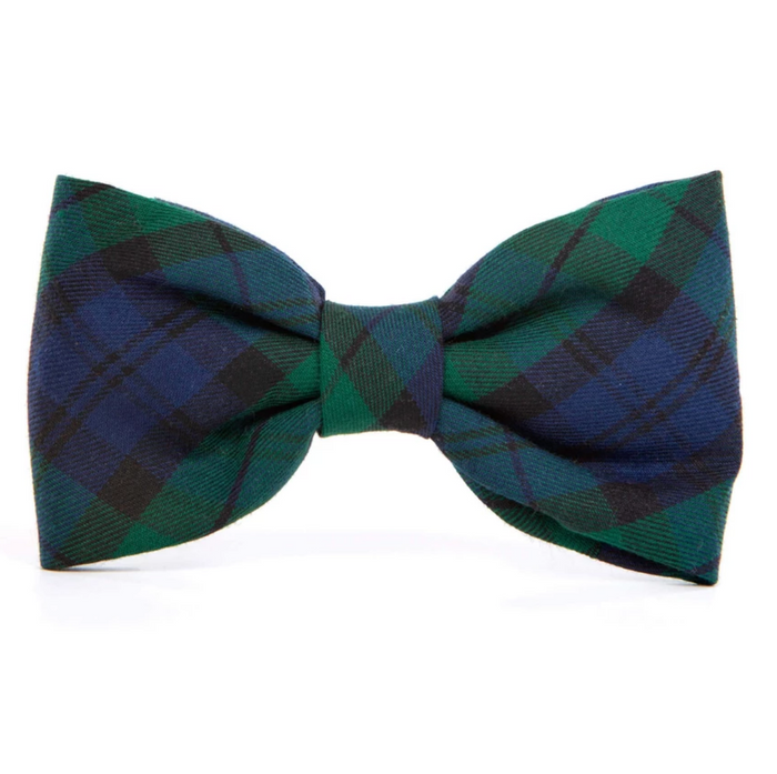 THE FOGGY DOG | Blackwatch Bow Tie