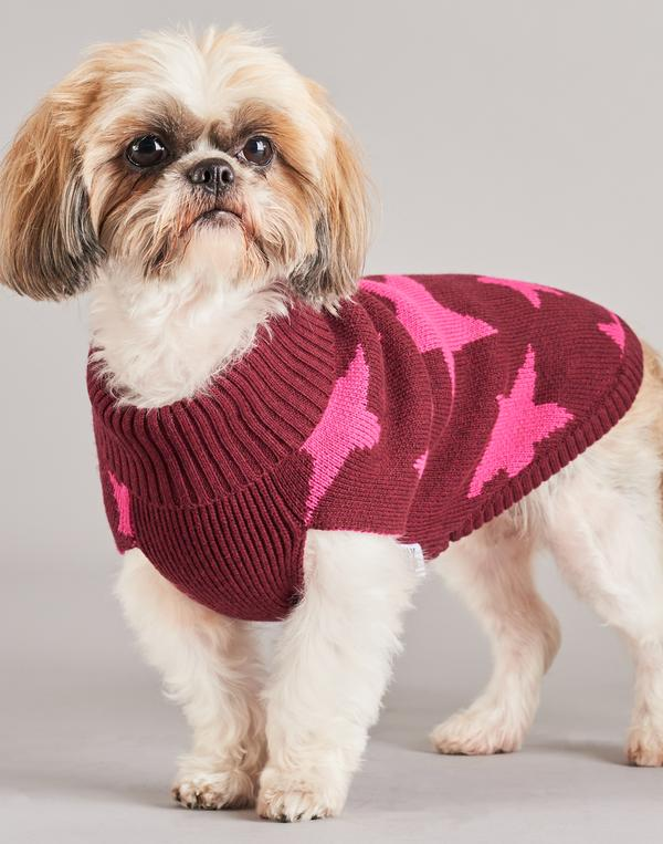 TINY WOLF | Superstar Dog Sweater