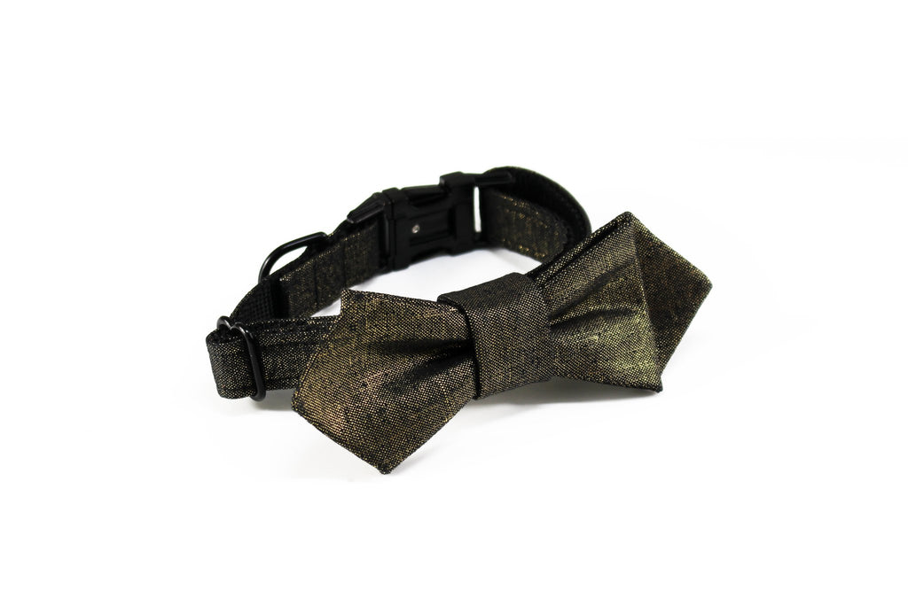 TRAX TIES | The Ziggy Contemporary Bow Tie