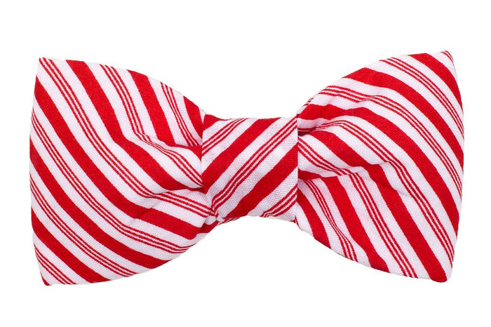 TRISH HAMPTON | Peppermint Patty Bow Tie