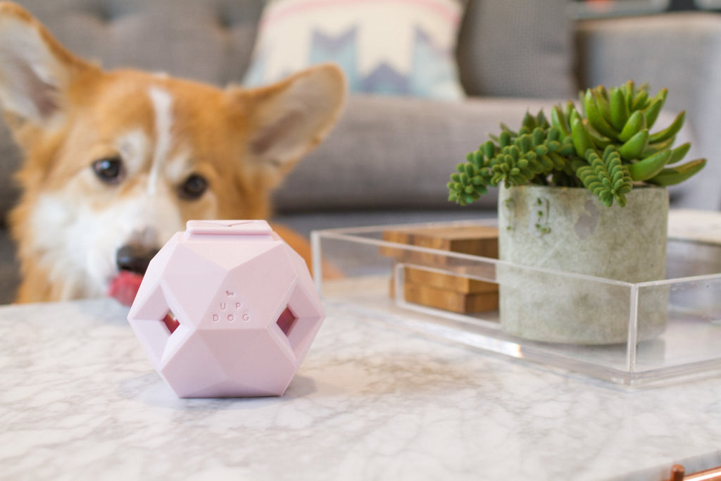 UP DOG TOYS | The Odin in Rose Quartz