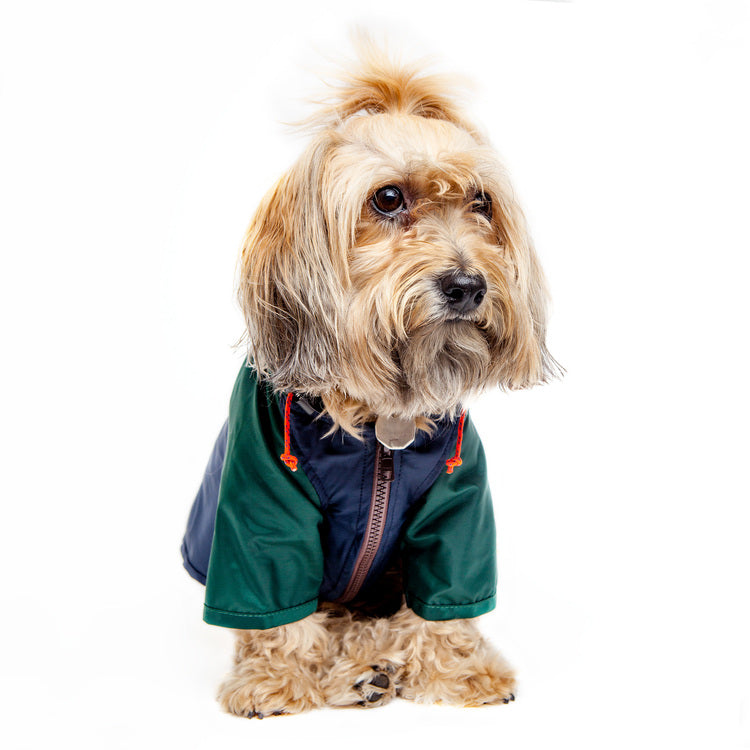 Nylon Colorblock Dog Rainbreaker in Hunter Green & Navy (Exclusive to DOG & CO.)