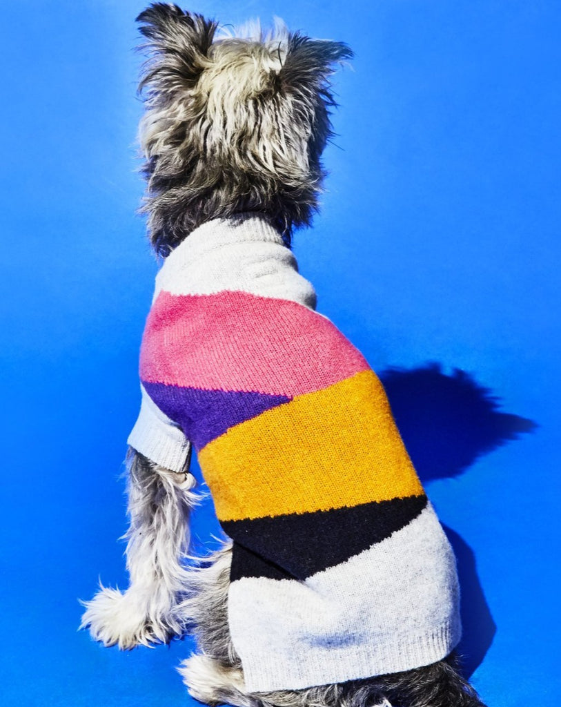 Asymmetric Dog Sweater in Grey