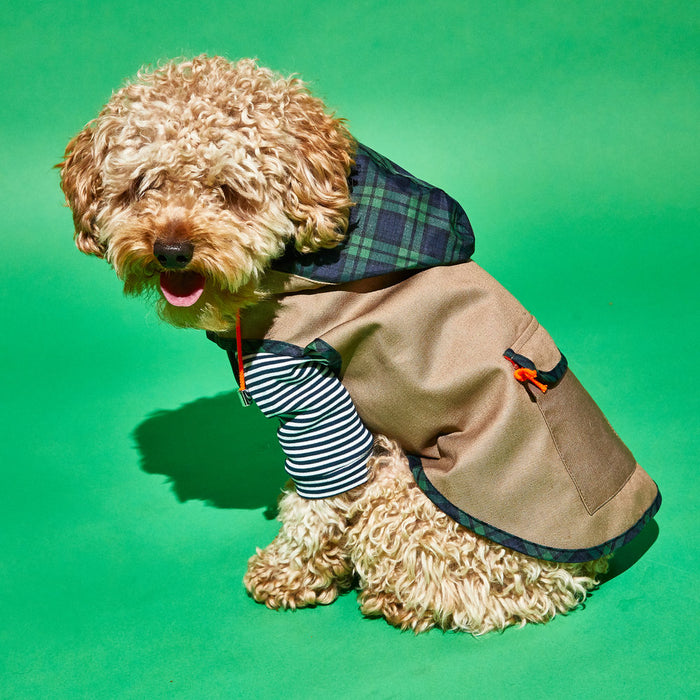 WARE OF THE DOG | Khaki Anorak Raincoat with Tartan Trim