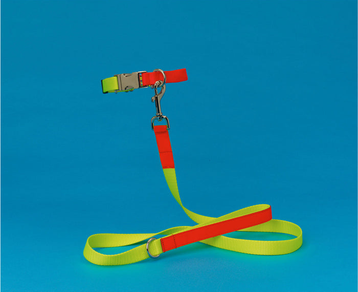WARE of the DOG | Nylon Leash in Yellow/Orange