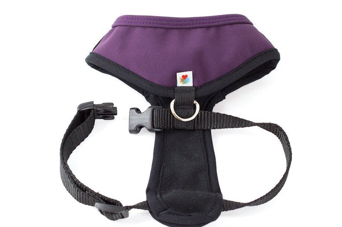WILDEBEEST | Laguna Harness in Plum