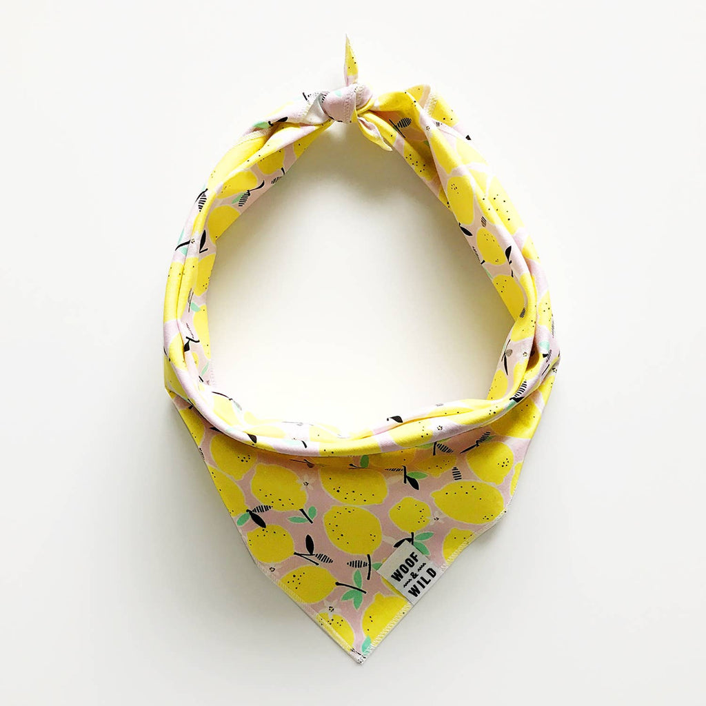 Liz Dog Bandana (FINAL SALE)