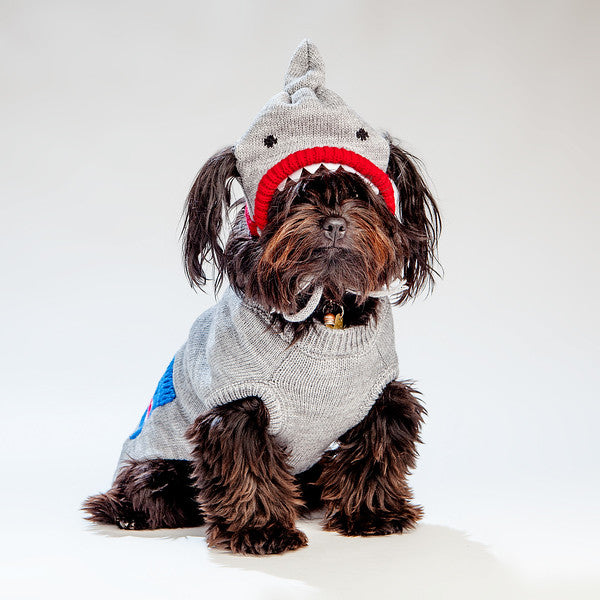 WORTHY DOG | Shark Hat