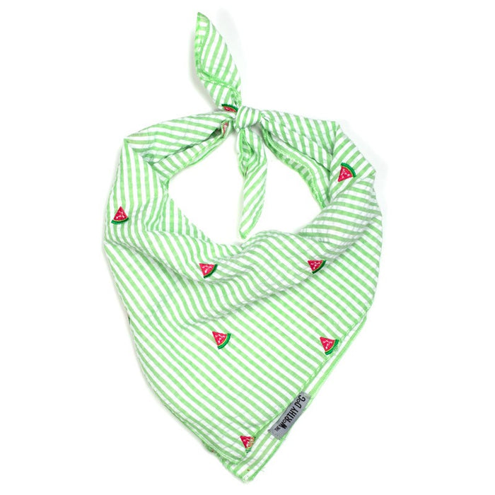 THE WORTHY DOG | Bandana in Green Stripe & Watermelon