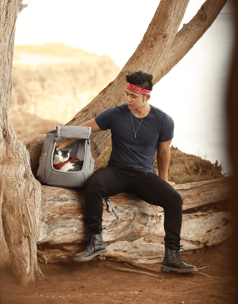 The Navigator Convertible Cat & Small Dog Backpack