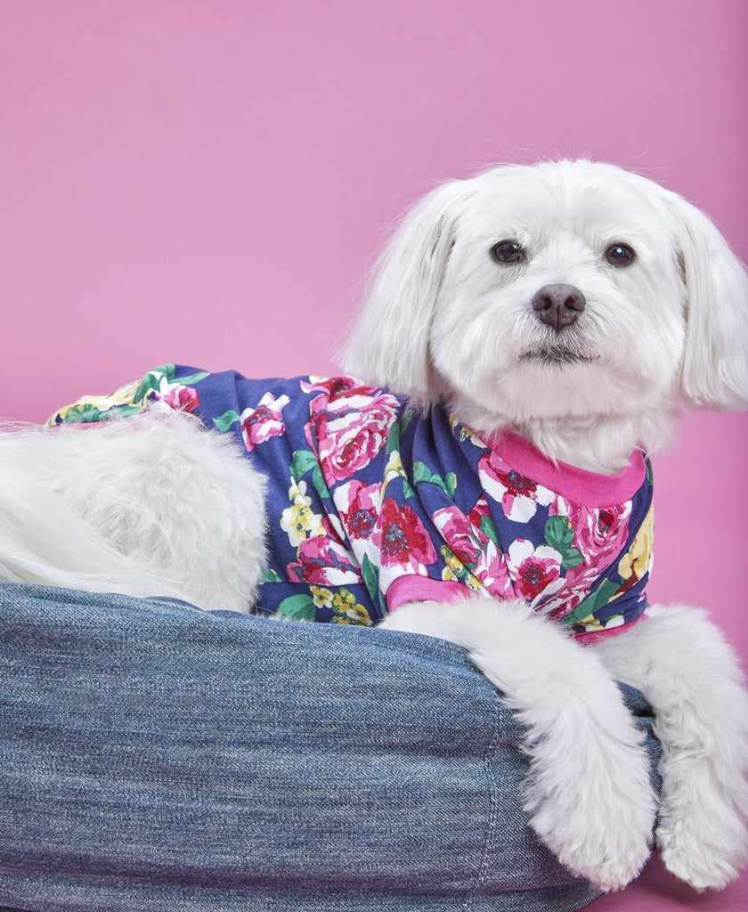 BEDHEAD | Lounge Dog T in Bella Rose