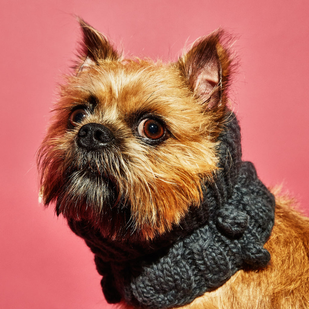 WARE of the DOG | Bobble Turtleneck Scarf in Grey