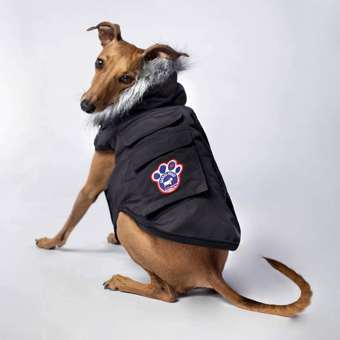 CANADA POOCH | Everest Explorer Vest in Black
