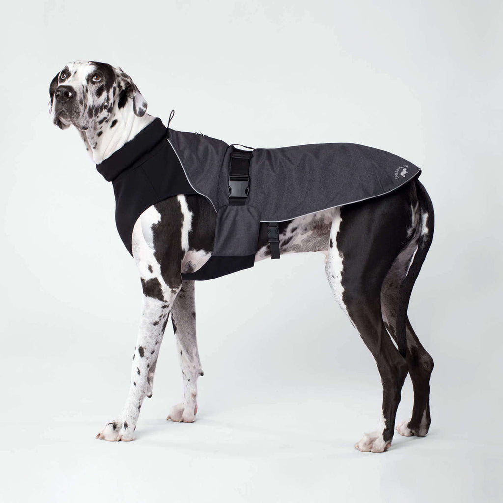 CANADA POOCH | The Expedition Coat in Charcoal (BIG DOG SALE)