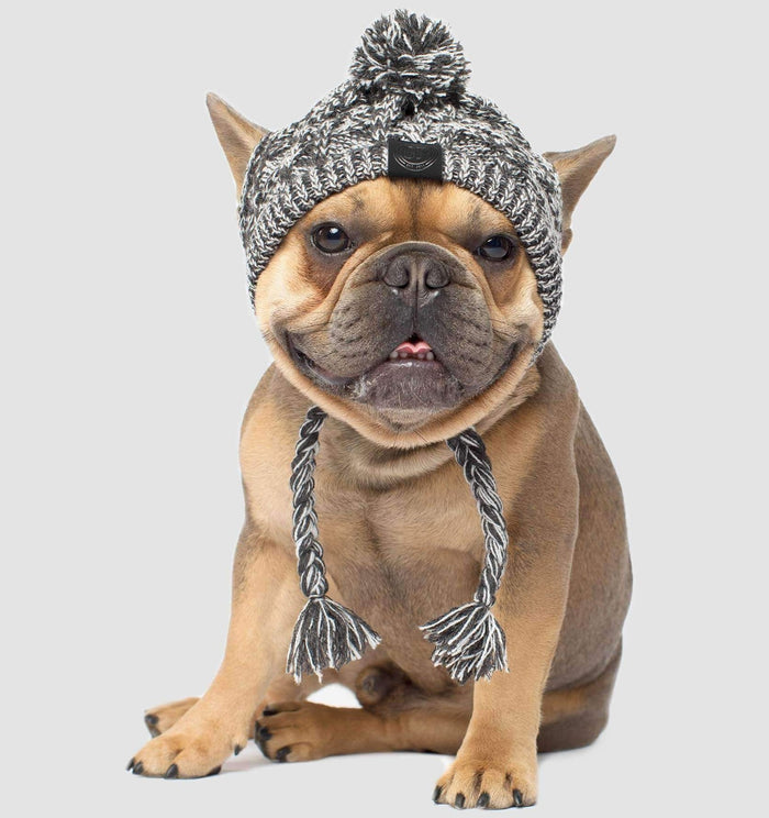 CANADA POOCH | Polar Pom Pom Hat in Charcoal