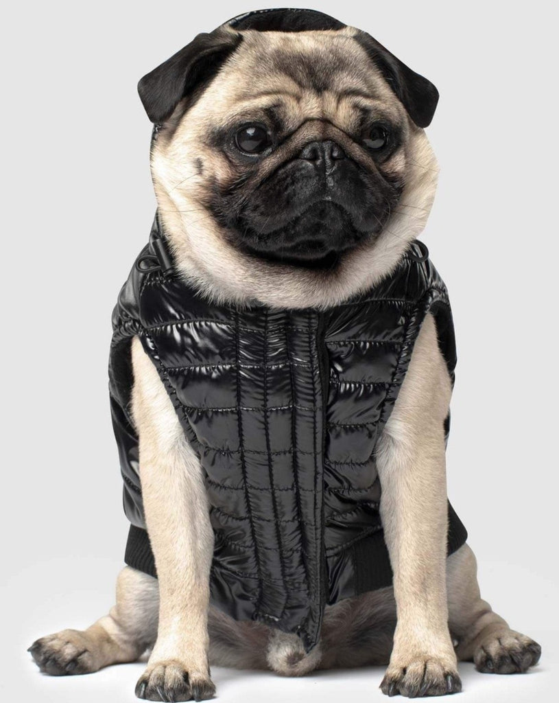 Shiny Puffer Dog Coat in Black