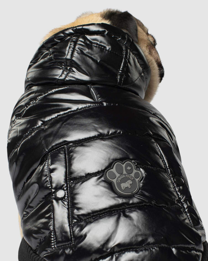 Shiny Puffer Dog Coat in Black (FINAL SALE)