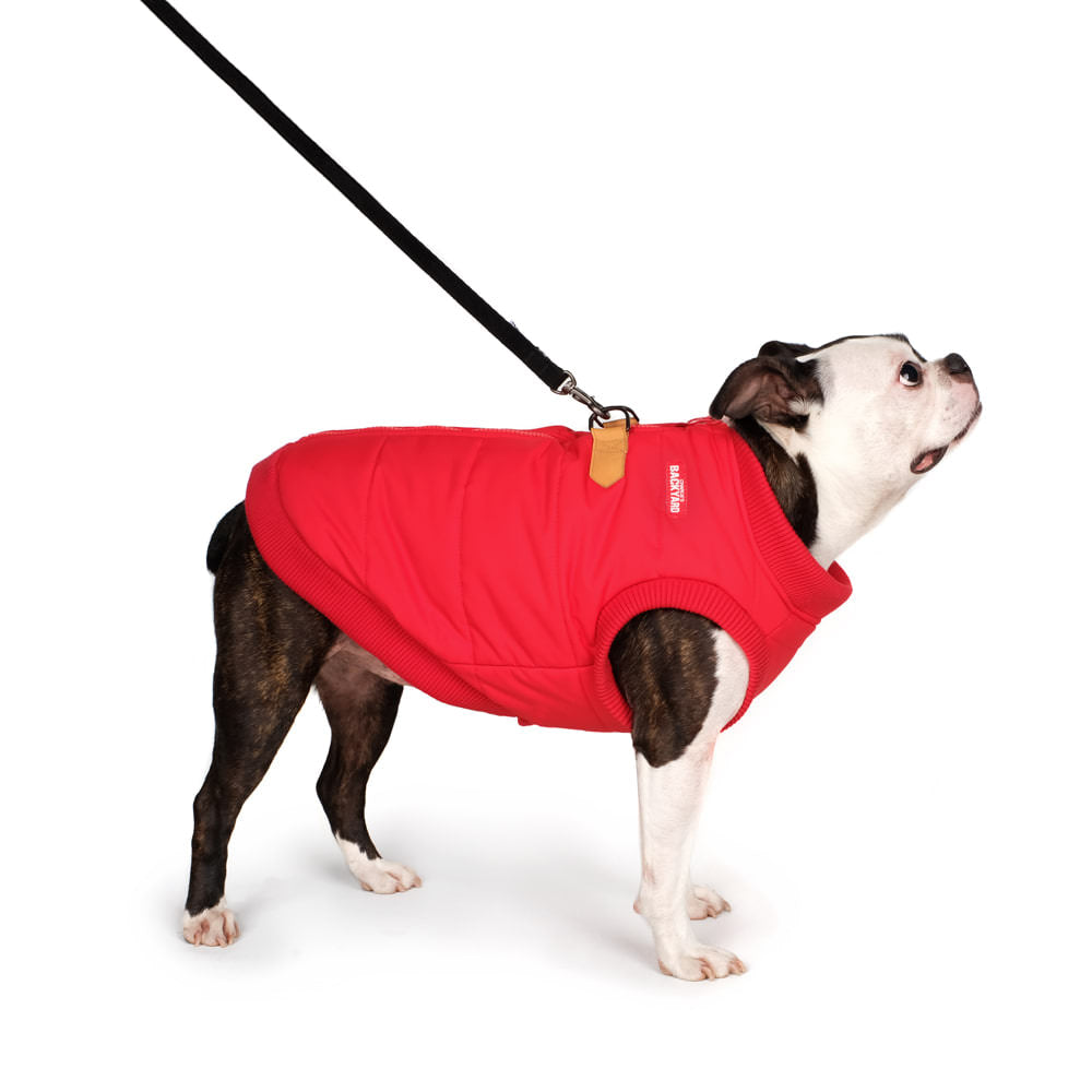 CHARLIE'S BACKYARD | Harness Jacket in Red