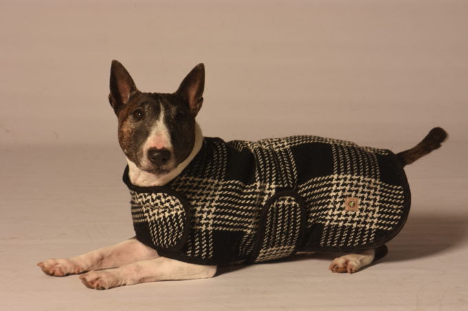 CHILLY DOG | Black & White Plaid Coat