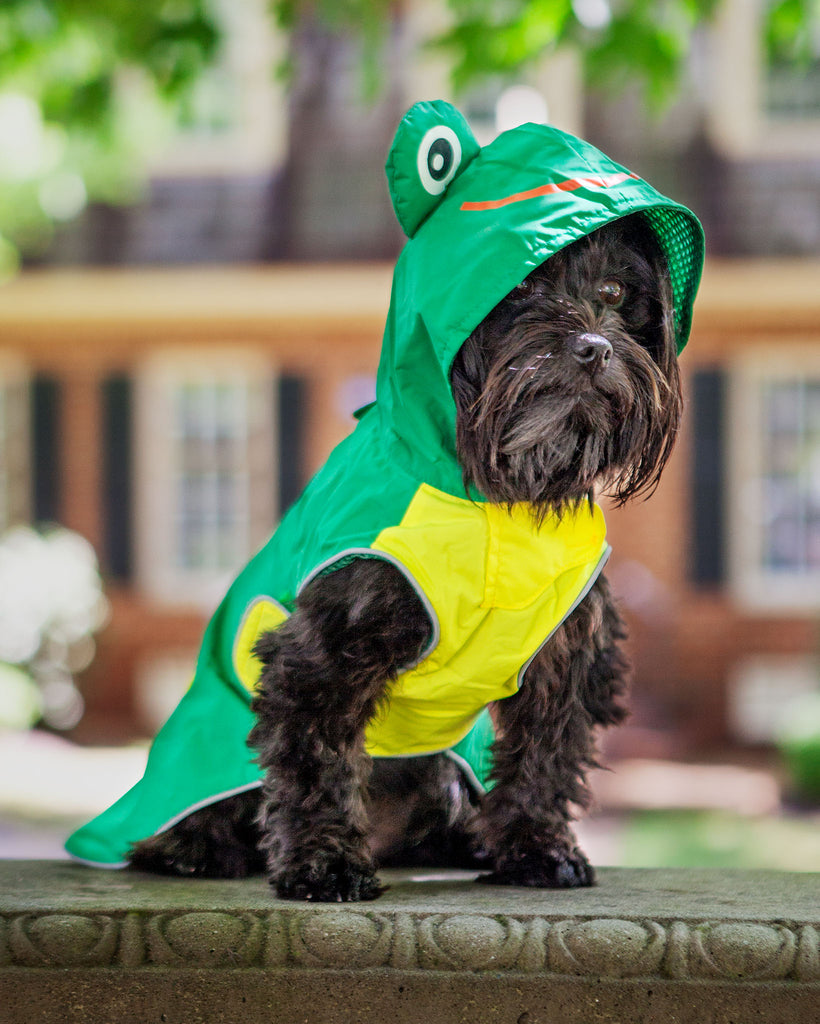 Frog Raincoat in Green (Immediate Ship)