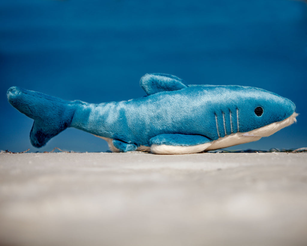 FLUFF & TUFF | Tank the Shark Dog Toy