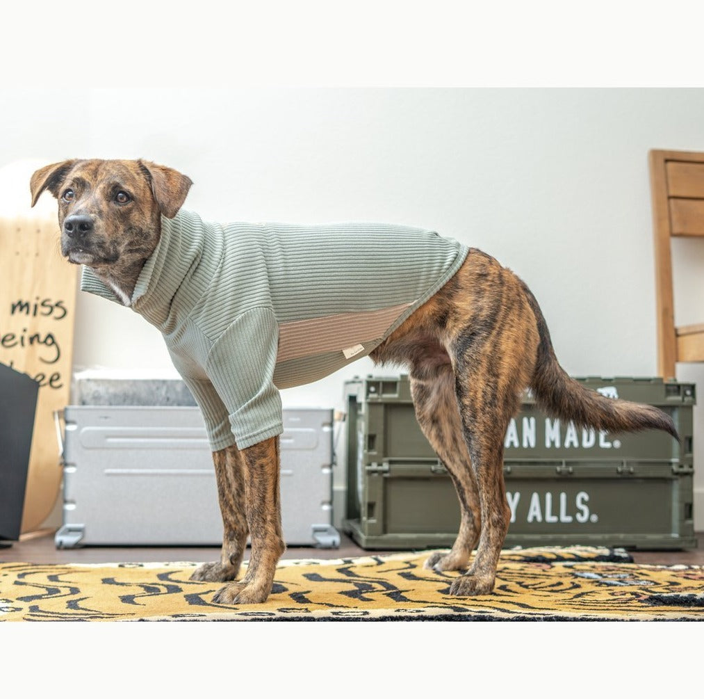 High Neck Dog Tee in Sage Green