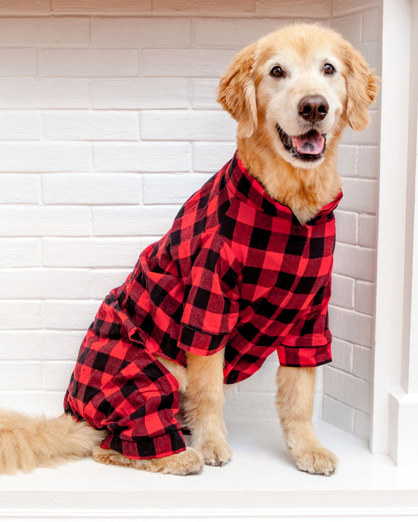 Buffalo Check Flannel Dog PJ's