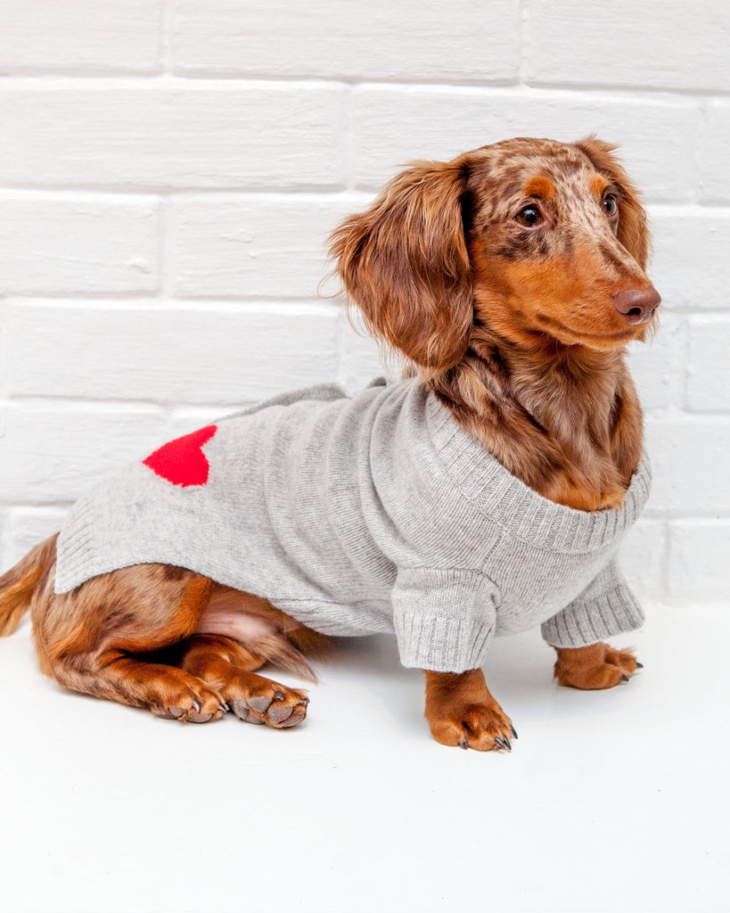 Heart Dog Cardigan Sweater in Grey