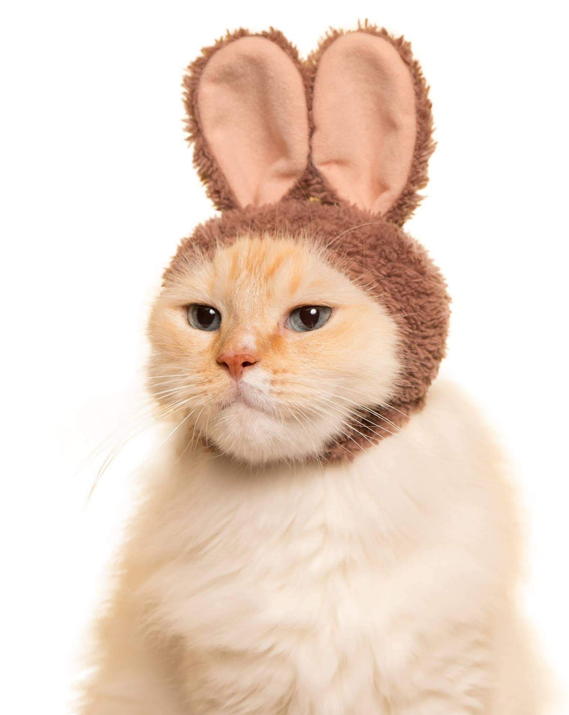 Japanese Cap for Cats - Rabbit (Surprise Box)