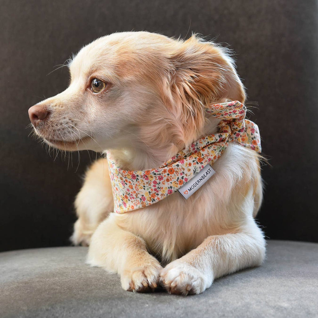 Adventure Neckwear Bandana in Wildflower (Immediate Ship)
